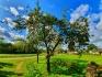 Pārdod zemi, Pie Daugavas - Attēls 8