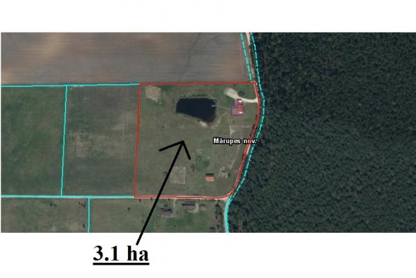 Pārdod māju, Pūrmaliņas - Attēls 35
