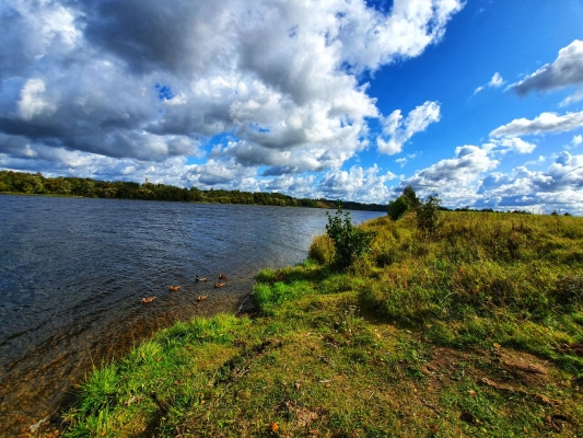 Pārdod zemi, Pie Daugavas - Attēls 2