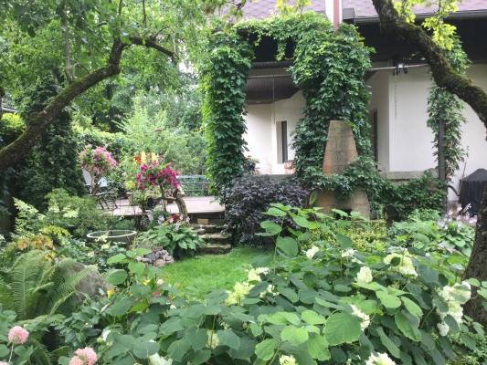 Pārdod māju, Zantes iela - Attēls 15